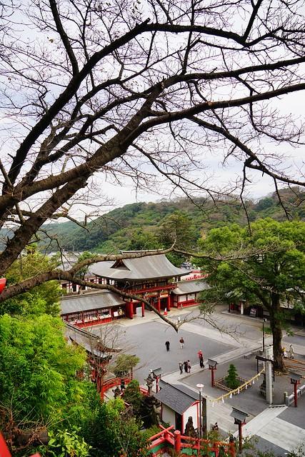 日本,九州,佐贺祐德稻荷神社,据说祈求生意兴旺与恋爱超灵验的地方。(同场加映和服体验与当地限定的祐德羊羹(鞭炮羊羹)