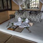 Savute Safari Lodge - Welcome Back thumbnail