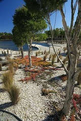 Cranbourne RBG Aug 2017 110 (Graeme Butler) Tags: water landscape history gardens australianplants architecture victoria australia