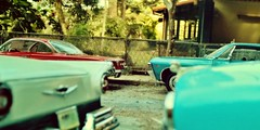 Childhood Memories Street Neighborhood 1 (gpholtz) Tags: diorama miniatures 118 diecast impala
