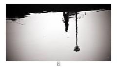 A Morning Walk... (krishartsphotography) Tags: krishnansrinivasan krishnan srinivasan krish arts photography monochrome fineart fine art reflection ripples walking person sankey tank bangalore bengaluru karnataka india