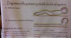 """36932570552 81952b21f0 m - Mostra """"Via Verità e Vita"""""""