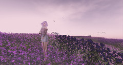 """""""Sometimes i don't know, which moment, which cool gust of wind will come, and enchant me tousling my hair and my heart..."""" - S. Khan (kimmyridley) Tags: whitedunesestates lfelesféesendormies ph maitreya lelutka delmay secondlife lastofsummer avatarlife sexygirl secondlifenature secondlifeblog secondlifebloggers solitude bloggage windinmyhair i3f thefantasycollective"""