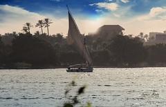 the River Nile (samir.beorn) Tags: egypt cairo maadiisland river nile nikon riverside love boat sailing water morning sunset