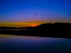 Pôr do Sol no Parque Barigui (Eduardo PA) Tags: pôr do sol no parque barigui curitiba paraná nokia pureview microsoft windows phone 950xl lumia wp