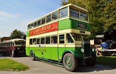 873 UF6473 (PD3.) Tags: 873 uf6473 uf 6473 leyland td1 amberley west sussex chalk pits museum bus buses preserved vintage coach heritage centre show historic history southdown motor services