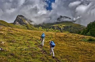 Switzerland, Feld, above Grindelwald. (Canton of Bern ).   Izakigur No. 8448.