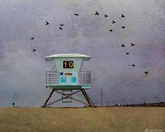 Lifeguard (Ken Mickel) Tags: beach california kenmickelphotography landscape lifeguardstand outdoors sand seashore shore texture textured textures things ventura venturapier photography