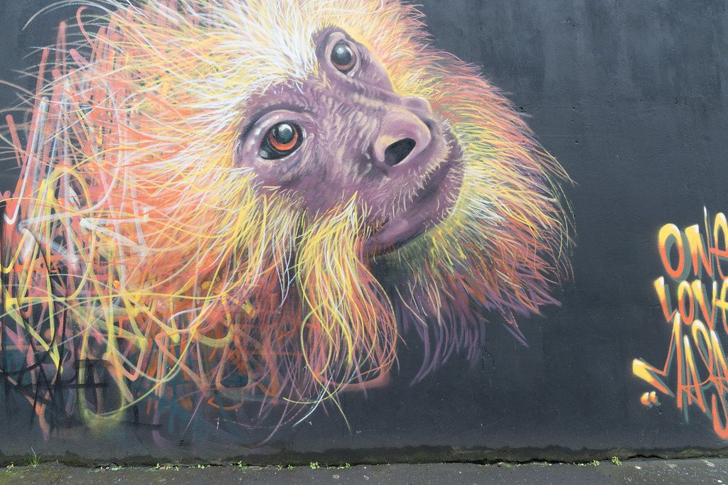 EXAMPLES OF URBAN CULTURE IN BELFAST [STREET ART AND GRAFFITI]-132914