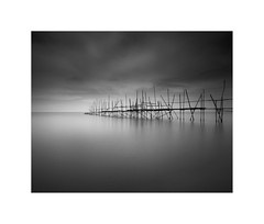 Fragility II (^soulfly) Tags: longexposure daytime simplicity malaysia monochrome bnw bw blackwhite canon asia johor nd filter nd110 soulful bnwsoul