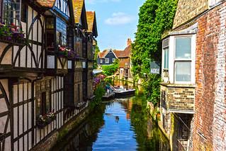 Canterbury 22 June 2017-0221a.jpg