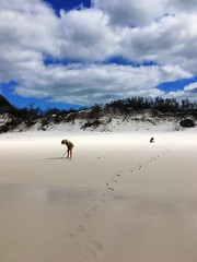 Exploring. Hill Inlet.