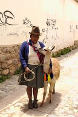 _MG_1991 (galoware) Tags: peru tawantinsuyu cuzco cusco qosco people llama cholos chola camelido vicuña sigma30mmf14dchsmart