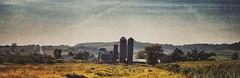 pastoral musings...(HSS) (BillsExplorations) Tags: slide sliderssunday pastoral pasture sheep alpacas rural farm texture snapseed silos panorama field illinois midwest country