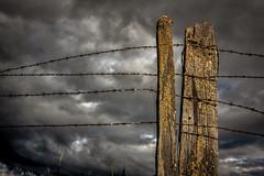 (Abel AP) Tags: fence clouds sky decay donedwardssanfranciscobaynationalwildliferefuge donedwardsnationalwildliferefuge fremont california usa sanfranciscobayarea northerncalifornia outdoor abelalcantarphotography twop