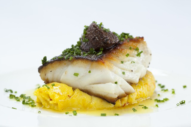 ROH Hake with Saffron Mash