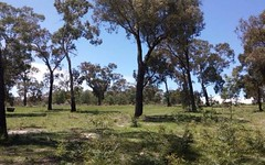 256 mount haven way, Meadow Flat NSW