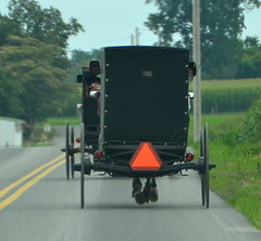 Rear view (afagen) Tags: pennsylvania lancastercounty amishcountry groffdaleconferencemennonitechurch wengermennonite oldordermennonite mennonite horseandbuggy buggy