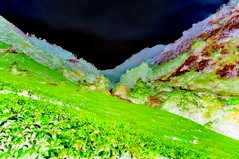 India - Kerala - Munnar - Tea Plantagen - 156bb (asienman) Tags: india kerala munnar teaplantagen asienmanphotography asienmanphotoart