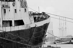 Different generations... (JOAO DE BARROS) Tags: joão barros monochrome ship trawler nautical maritime