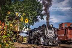 (Coloradorailphotographer) Tags: goldencolorado steamtrains steamlocomotive steamengine drgw riogranderailroad denverandriograndewestern 491 coloradorailroadmuseum railroad trains train coloradotrains colorado