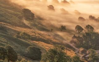 Rural Mist