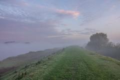 Beautiful Morning (Martine Lambrechts) Tags: beautiful morning landscape foggy nature clouds