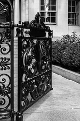 20170908_KCS_3687 (kaylaclare) Tags: boston blackandwhite beaconhill gate iron details