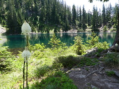 Melakwa Lakes Tril (Go4Hike) Tags: melakwalake hiking hikingwashington washingtonhiking summerhiking nature landscape trail washingtontrails pacificnorthwesthiking pacificnorthwest snoqualmiepass snoqualmiepasshiking mountains lakes i90hiking julyhiking summerhikinginwashington