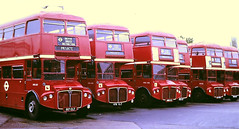 Slide 102-86 (Steve Guess) Tags: chiswick works london transport lt england gb uk bus rmc aec routemaster coach green line lcbs country rmc1516 516clt rmc1476 476clt