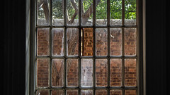Inmate Outlook (Theen ...) Tags: airflow bedroom brick cell criminallyinsane garden glass green hinge inmate mentalhospital outlook pane staff tree view wall white window zward