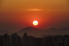 Sun!! (Rod.T28) Tags: sun sunset landscape cityscape canon5dsr sigma120300mm28sport riodejaneiro joá