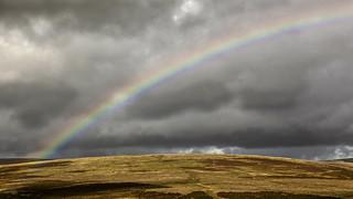 Dartmoor 02 - Rainbow