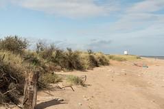 BEACH at SPURN HEAD, E YORKSHIRE_DSC_6523_LR_2.0 (Roger Perriss) Tags: spurnhead dunes grass d750 sand beach debris sanddunes kilnsea spurnpoint eriding eridingofyorkshire holderness penisula