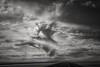 highwayman... (Alvin Harp) Tags: greatsaltlake bonnevillesaltflats utah i80 sonyilce7m2 fe24240mm cloudsstormssunsetssunrises highway blackandwhite monochrome bw bwclouds may 2015 alvinharp