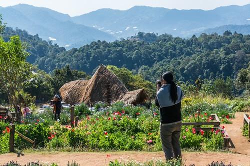 doi mon cham - thailande 11