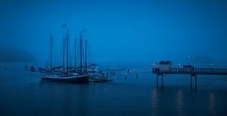 Bar Harbor Evening