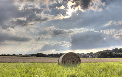 Great Sky (HDRforEver) Tags: great sky himmel blue blau photomatix canon 600d hdr hay bale landscape landschaft germany owl nordrheinwestfalen deutschland bluesky august nature natur green sun clouds wolken new