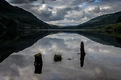Loch Eck Argyll Scotland (Brian Travelling) Tags: locheck reflection foreground interest interesting stump stumps hills mountains water argyll argyllshire pentax clouds
