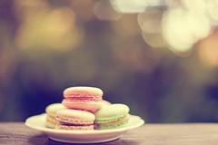 per chi ha voglia di dolcezza... (clo dallas) Tags: macarons dof colors bokeh 50mmf12 cake delicious frenchpastries canon6dmarkii
