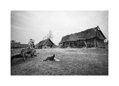 Barns (Jan Dobrovsky) Tags: people reallife outdoor countryside leica biogon21mm leicammonochrom social monochrome dog blackandwhite volyn ukraine human countrylife document village