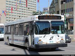 Winnipeg Transit #531 (vb5215's Transportation Gallery) Tags: winnipeg transit 2002 new flyer d40lf