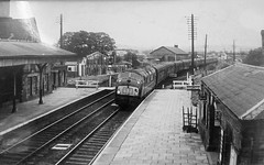 Photo taken of a photo in the waiting room at Ludlow 10.03.2017 showing the station in the 1960's with a Warship heading south. (The Cwmbran Creature.) Tags: british rail class train trains railway monochrome black white b w bw 42 43 warship diesel shropshire history