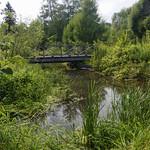 CEF's Arboretum thumbnail