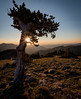 Sunrise (kf55) Tags: mtevans colorado