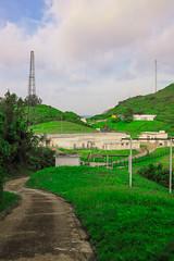 Lush Green (kevanlui) Tags: pathway cartagena hangzhou suzhou gard hvar languedoc aude menara cienfuegos jinji lake pasdecalais