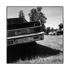rambler • vignoles, burgundy • 2017 (lem's) Tags: renault rambler vintage classic car automobile vignoles bourgogne burgundy zenza bronica