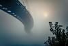 Disappear (rg69olds) Tags: 09032017 50mm canondigitalcamera nebraska sigma50mmf14artdghsm bridge canon canoneos6d downtown fog omaha sigma50mmf14 sunrise foggy bobkerreypedestrianbridge disappear curvy 50mmf14dghsm|a sky
