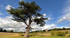 CROOME LANDSCAPE (chris .p) Tags: nikon d610 view croome 2017 worcestershire capture church nt september nationaltrust clouds