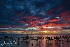 Beautiful sunset at Arborek island, Raja Ampat, West Papua, Indonesia (angesvdlogt.photography) Tags: ngc island arborek mangrove beautiful indonesia papua rajaampat redsky sunset beach